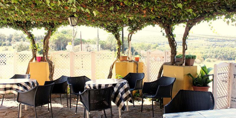 terraza-jardin